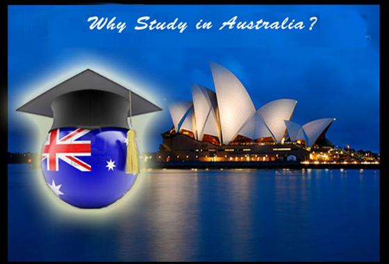 Du học Úc - Ngành nghề thu hút nhân lực tại Úc