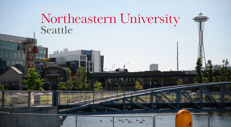 Cơ hội OPT 3 năm cùng Chương trình Bachelor's Completion chuyên ngành IT  của Northeastern Univerisity (NEU)
