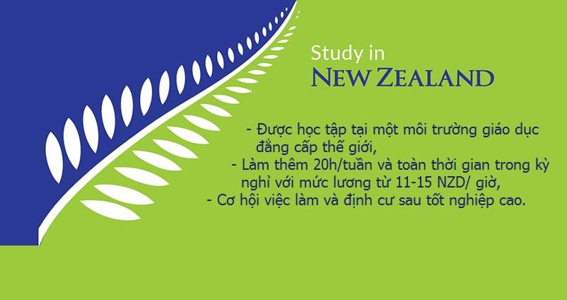 Điểm danh 5 lợi ích tuyệt vời khi du học New Zealand
