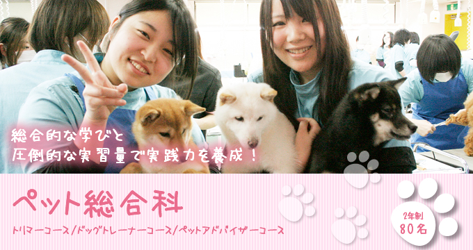 Du học Nhật Bản ngành học chăm sóc thú cưng tại Taiken