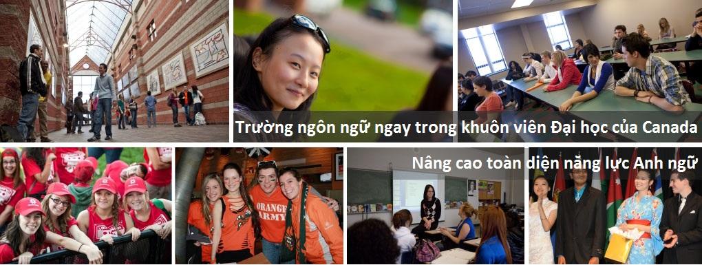 Du học Canada - Trường Anh ngữ học thuật ICEAP