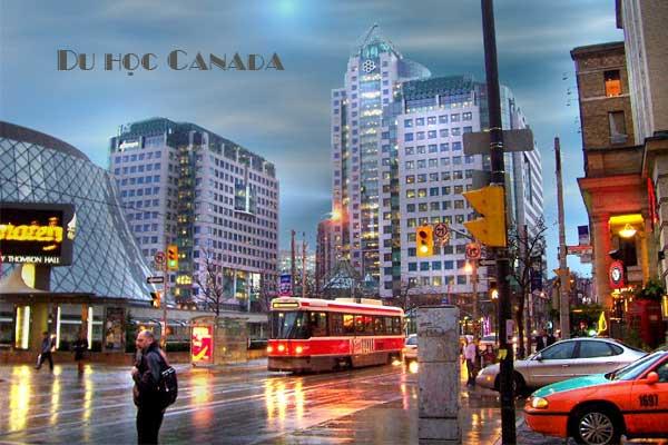 5 lý do để chọn học tại Thành phố Toronto - Canada