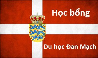 Chia sẻ kinh nghiệm: Bí quyết xin học bổng Du học Đan Mạch