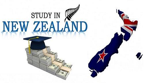 Cơ hội săn học bổng trung học tại Wellington, New Zealand