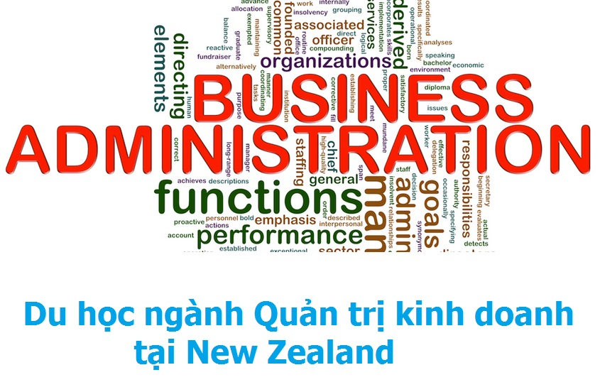 New Zealand – điểm đến lý tưởng cho ngành Quản trị kinh doanh