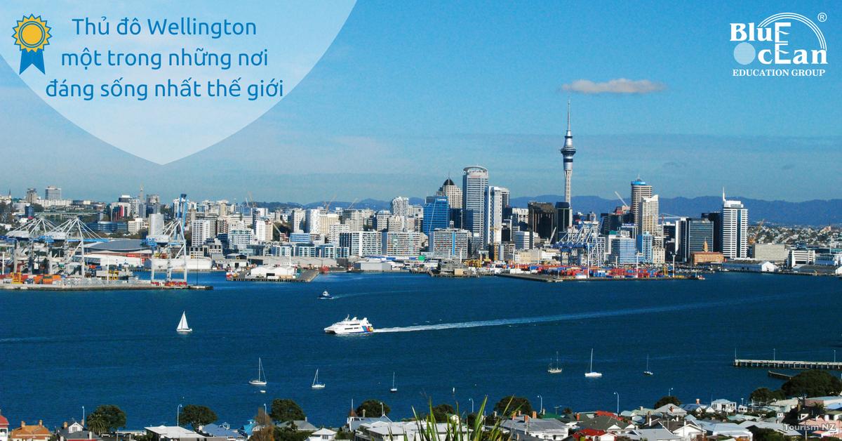 Học tập tại thủ đô Wellington - một trong những thành phố đáng sống nhất thế giới