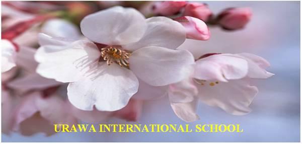 Trường Nhật ngữ quốc tế Urawa - Nhật Bản