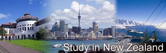 Hệ tiến sĩ và cơ hội định cư New Zealand