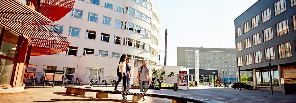 Trường Đại học Jönköping (JU) - Thụy Điển